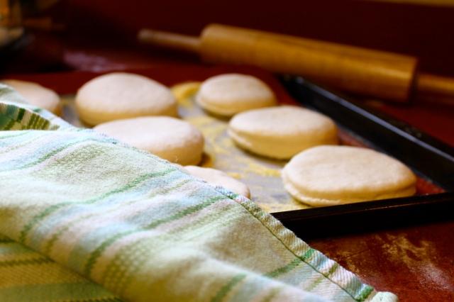 English Muffins Rising